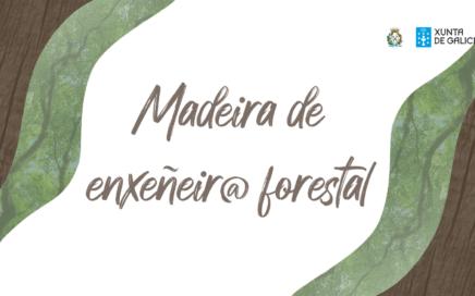 Campaña Madeira de Enxeñeir@ Forestal – Octubre 2020